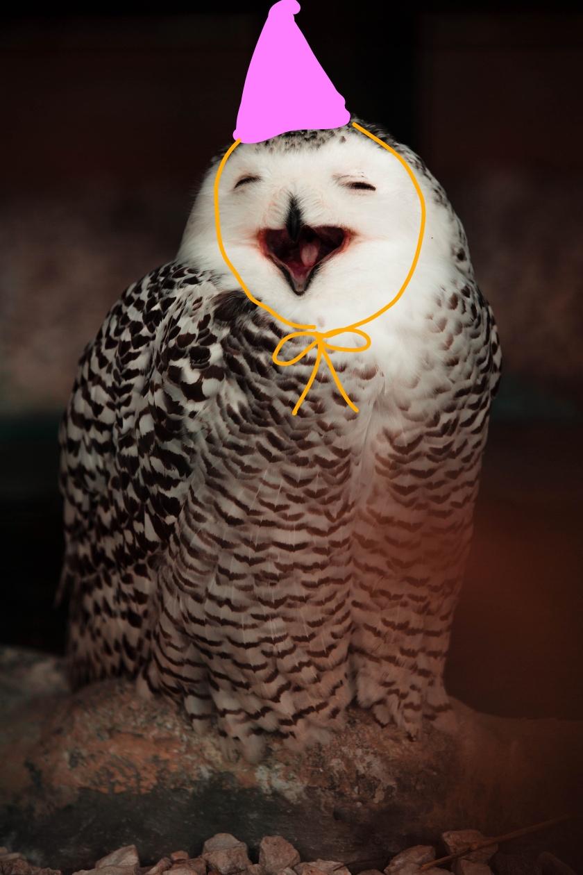 Inkedwhite-and-black-owl-1804976_LI